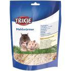 Trixie Torkade Mjölmaskar 70g. Godis rik på animaliskt protein.