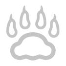 Dyna med tassmotiv i mjuk korthårig plysch