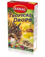 Nyttiga linser med tropiska frukter