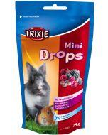 Nyttiga mini-drops godisar med skogsbär