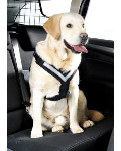 MIMsafe Bilsele AllSafe. Säker krocktestad bilsele till hund.