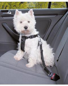 Säkerhetssele för hund i bil