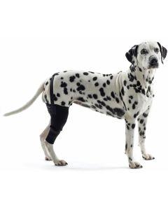 Knäledsskydd till hund, som minskar smärta och förbättrar balansen