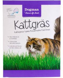 Dogman kattgräs. Kattgräs som stimulerar matsmältningen. I så låda.