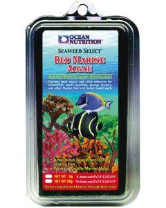 Näringsrika röda havsalger för betande fiskar