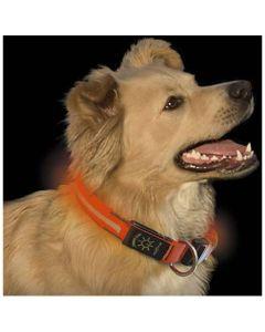 Nite Ize Dawg LED Collar Or. L. Med lysande eller blinkande LED.