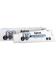Aptus Recovery Booster Cat. Näringspasta till katter utan aptit.