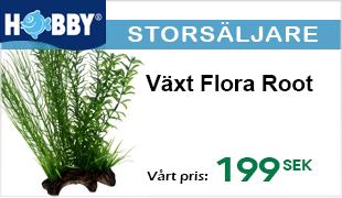 Storsäljare - Dekorativ akvarieväxt med trätrot