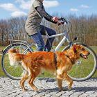 Cykelkoppel till hund.