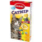 Sockerfritt godis med kattmynta