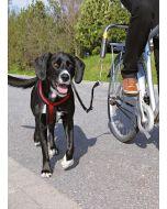 Cykelfäste för tyngre hundar