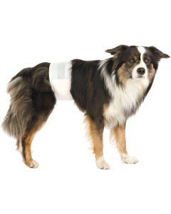 Trixie Blöjor 12p Hane S-M. Praktiska och bekväma blöjor för hanhund.