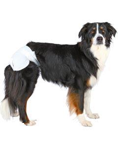 Hundblöja för tikar