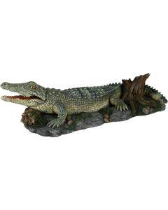 Krokodil med bubbel anslutning