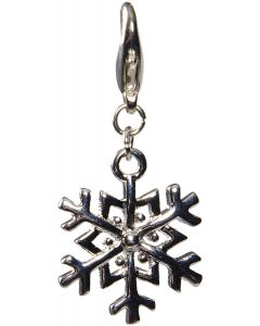 Vacker snöflinga i silver