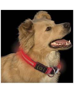Nite Ize Dawg LED Collar Röd S. Med lysande eller blinkande LED.