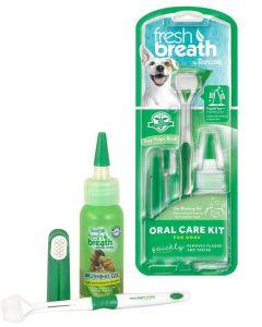 Tandvårdsset med tandkräm och två tandborstar