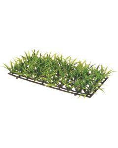 Hobby Akvarieväxt Plant Mat 2. Akvarieväxt som ger grönskande botten.