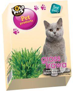 LoLo Pets Grass 100 gram. Kattgräs av hög kvalite i odlingslåda.