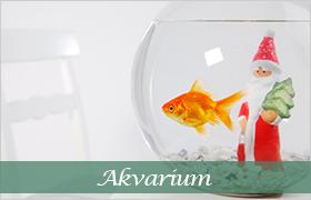 DjurMaxi julklappstips till alla akvarister