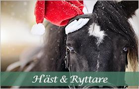 Julklappstips häst och ryttare