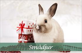 Julklappstips gnagare och kaniner