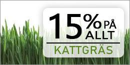 15% rabatt på allt kattgräs